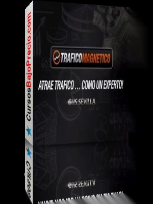 Trafico Magnetico