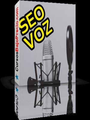 Curso SEO por Voz