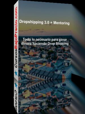 Dropshipping 3 Mentoring